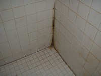 Carolina Grout Works Grout Clean & Seal Charlotte Greensboro