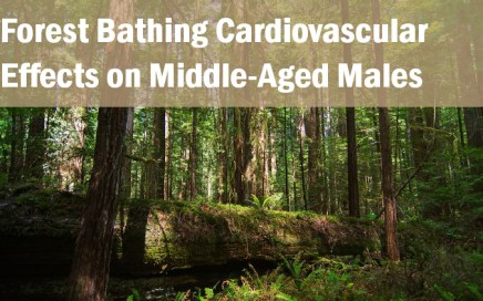 Effects of Forest Bathing on Cardiovascular Metabolic Parameters Middle-Aged Males