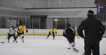 Basketball and ice hockey teams welcome new coaches