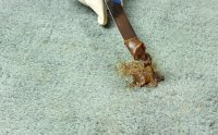 Natural Tricks To Easily Remove Grease Stains From Carpets ...
