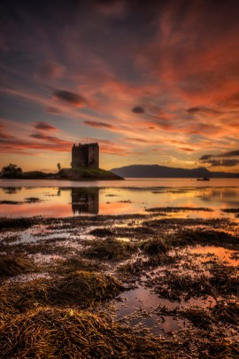 Image Copyright Jim McFarlane