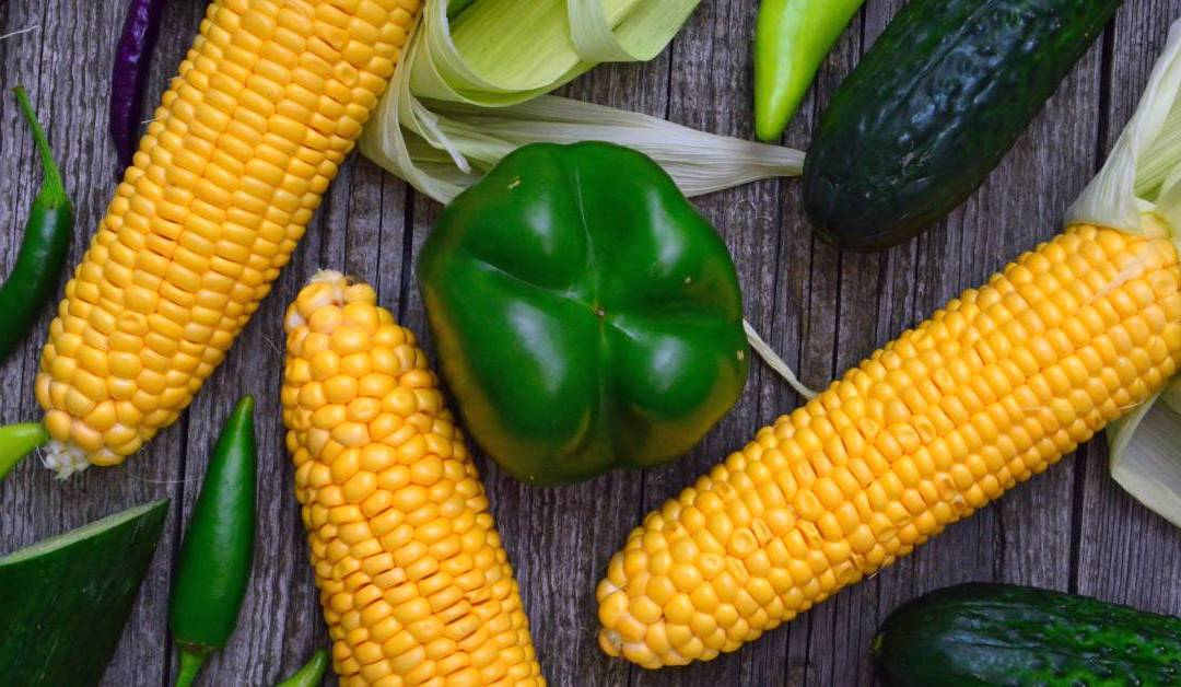 "QSR Magazine: ""4 Ways Restaurants Can Solve The Produce Problem"""