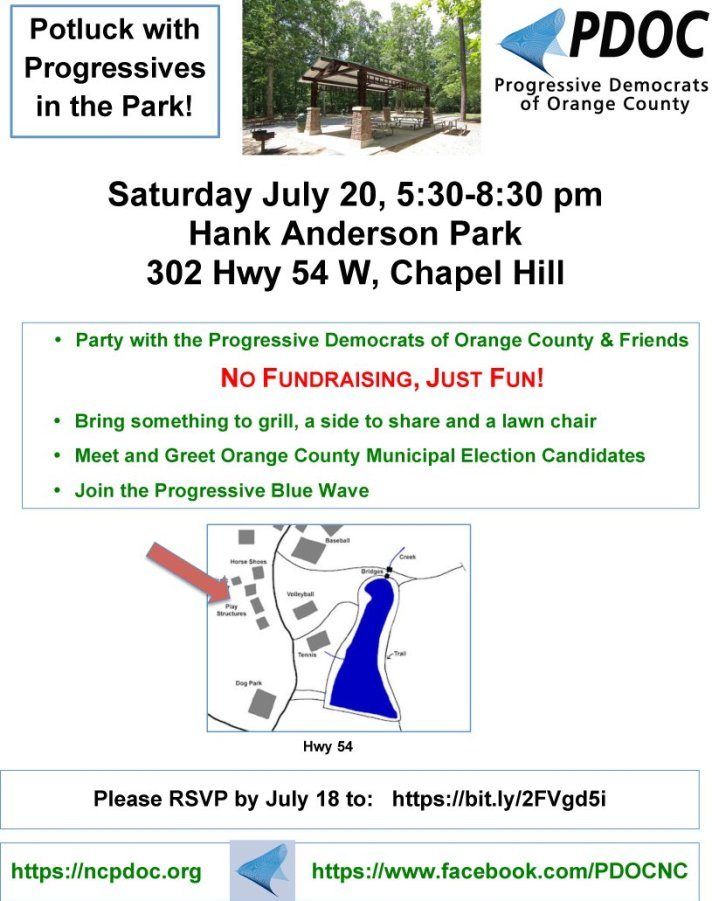Flyer for July 20th picnic