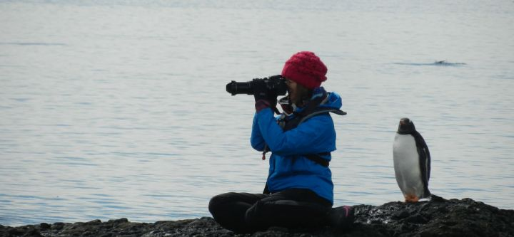 This photograph was submitted by Chris Parsons, Associate Professor in the Department of Environmental Science & Policy at George Mason University. Chris ran a field course for undergraduate and graduate students to Antarctica. Pictured is his graduate student Samantha Oester, who is photographing penguins.