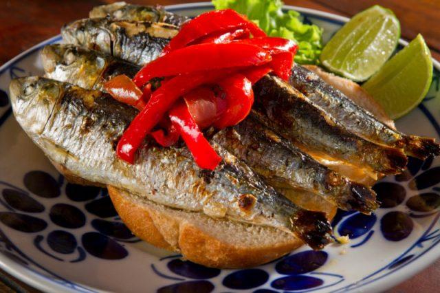 Qual é a melhor sardinha, a do Sul ou a do Norte?