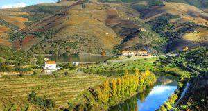 Sabe como se faz o vinho do Porto?
