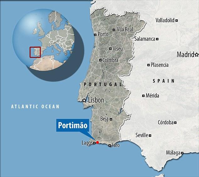 """Tubarão """"pré-histórico"""" raro capturado vivo em Portugal"""