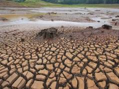 """""""Se não fizermos nada, cidades na Europa vão ficar submersas e outras sem água"""""""