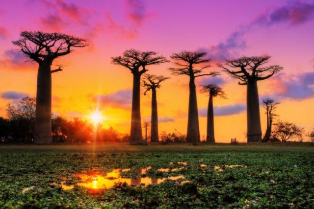 30 melhores locais do mundo para fotografar