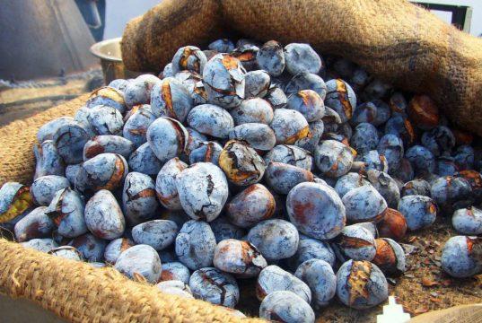 Castanhas Portuguesas, um tesouro nutricional