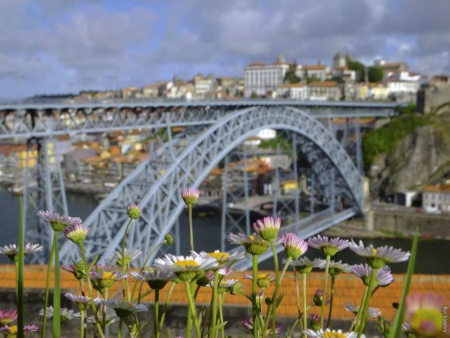 A Ponte D. Luís I