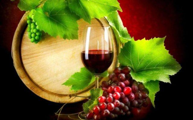 vinhos tintos do Alentejo