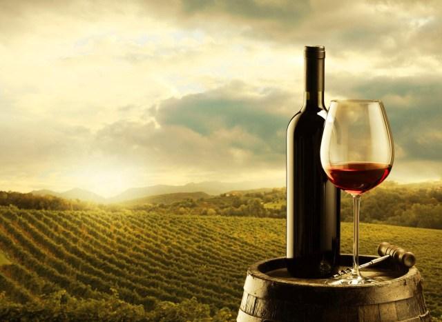 melhores vinhos alentejanos