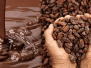 história do chocolate