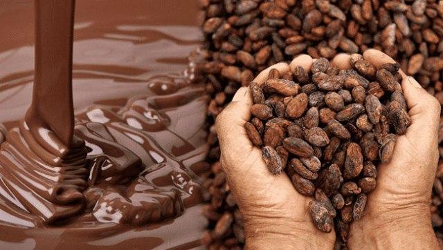 história do chocolate