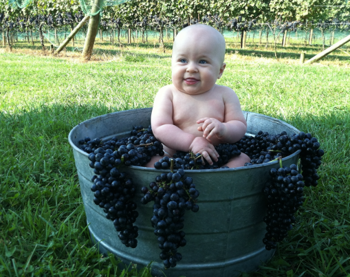 Baby Jack Loves Laurel Gray Merlot