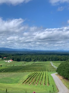 View of the Blue Ridge Mountains from Piccione Vineyards - Ronda, NC