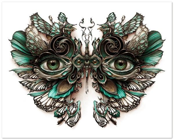 Lepidoptera 4