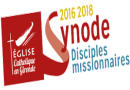 Synode 2016-2018