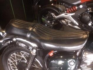 Kawasaki Estrella 250 (19)