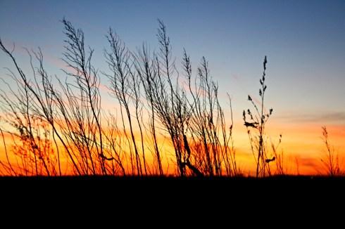 Week 3: Project 52 Nebraska Sunset