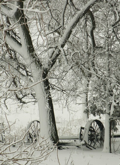 Snowy Farm Tires