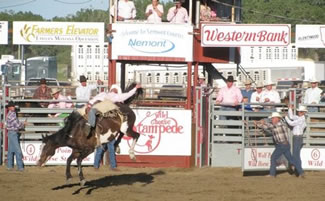 Wild Horse Stampede, Rodeo at Wolf Point