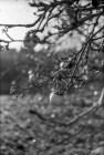 Film5_praktica007-7_1