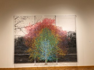 "Charles Gaines, ""Numbers and Trees, Central Park, Series I, Tree #9,"" (2016)"