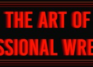 The art of professional wrestling