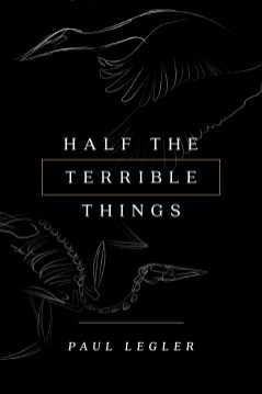 HalfTerribleThings-2