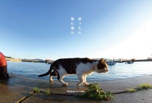 postcard-004