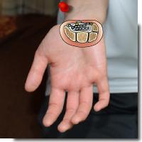 手根管症候群1アイキャッチ