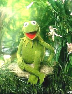 Green is cool, right Kermit?
