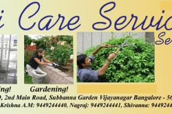 HICARE SERVICES