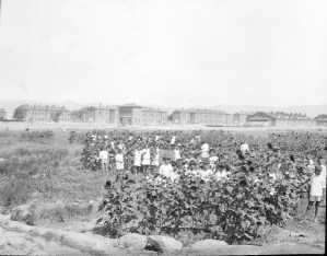 A large group of boys and girls in the orphanage gardens at Polygon Orphanage in Alexandropol. The barracks of the former military base are visible in the background.