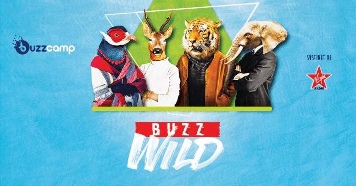buzz-camp