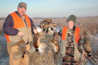 Guided Pheasant Hunts - 855-473-2875