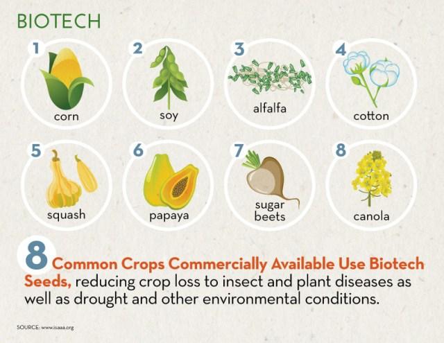 Biotech_GMO_InfographicA_Sept171