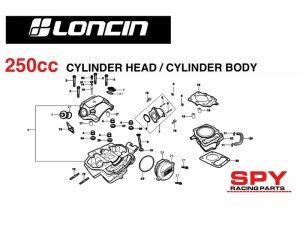 250cc loncin engine diagrams spy racing engine parts   Spy