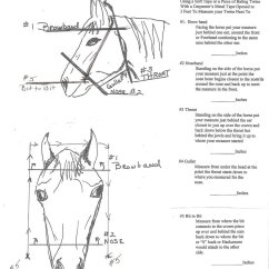 Horse Neck Diagram Blaupunkt 2020 Wiring These Illustrations Show You How To Measure For A New Bridle Or Breast Collar. If Have Any ...