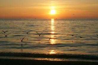 Copy of Freeport Sunset