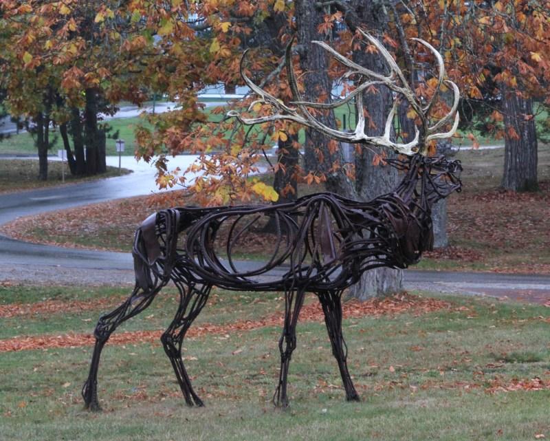 moose statue on COA campus