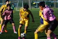 「波崎ユースカップ」全国大会常連校が28日からの決勝リーグに進出