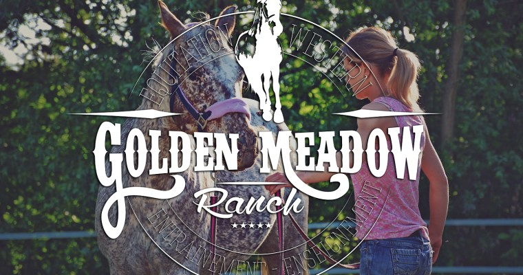 Genèse d'un logo équestre : le Golden Meadow Ranch