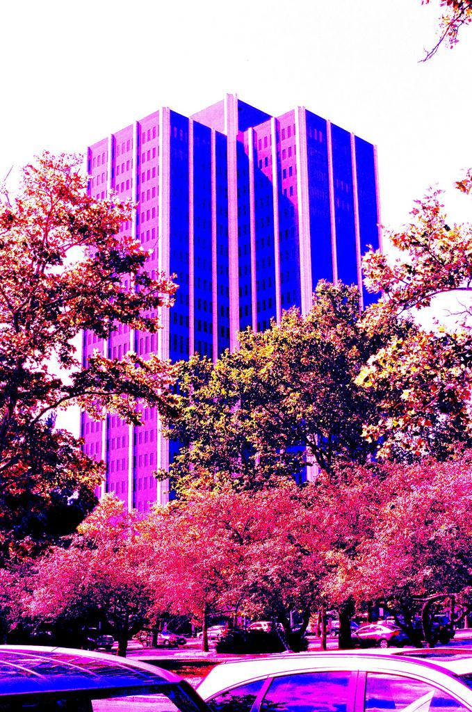 martin tower  Neck Pickup