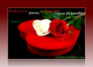 doi-trandafiri-si-o-inimioara_0f380b41f09e0d