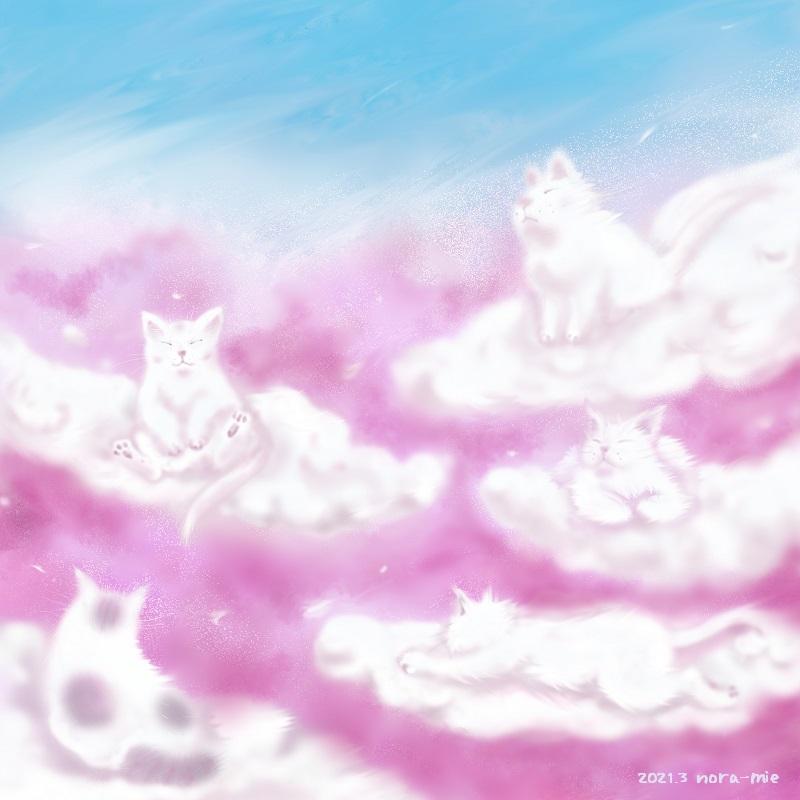 cat spring wave