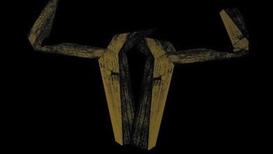 Photo of CSSABA (POL) «Underground lo-fi songs» CD 2012 (Pagan Records)