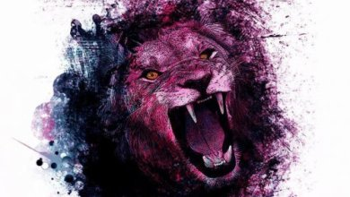Photo of GROOVENOM (DEU) «Pink lion» CD 2015 (Eigenproduktion)